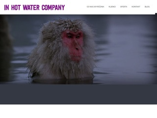 In Hot Water Company content marketing